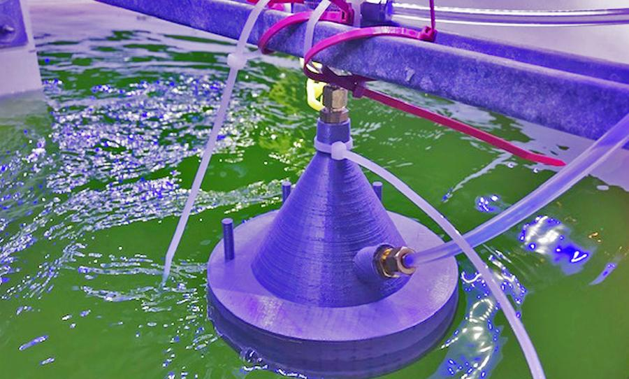 """Algae growing in a """"raceway"""" pond is monitored via chemical ionization mass spectrometry (CIMS) technology"""