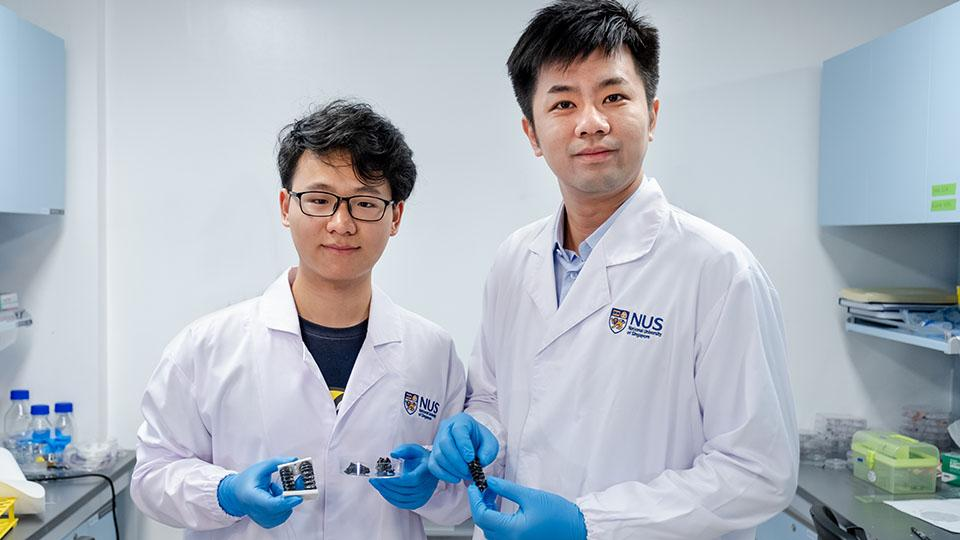 Asst. Prof. Chen Po-Yen (right) and doctoral student Yang Haitao, with samples of the material