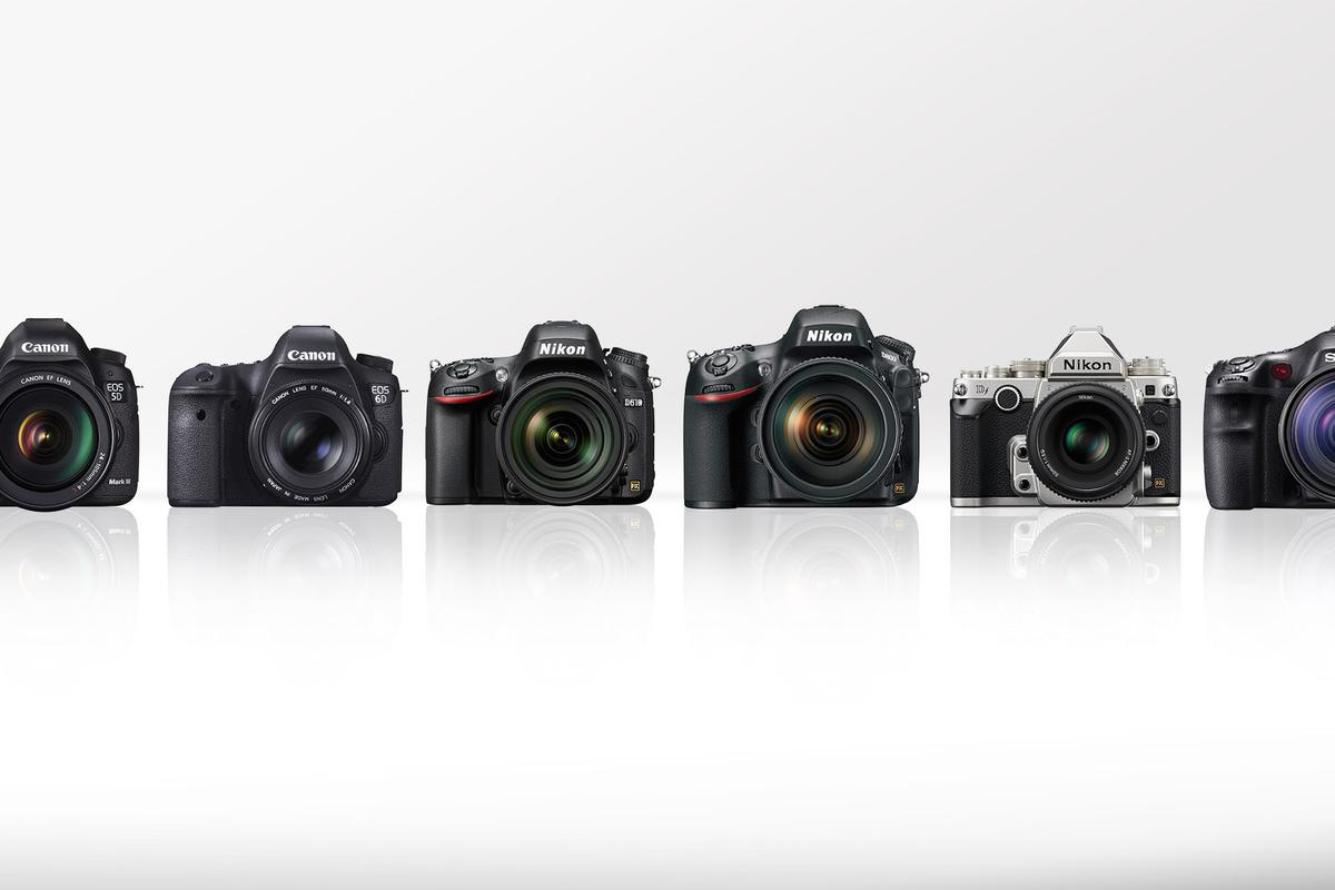 Gizmag compares some of the best high-end DSLRs on the market