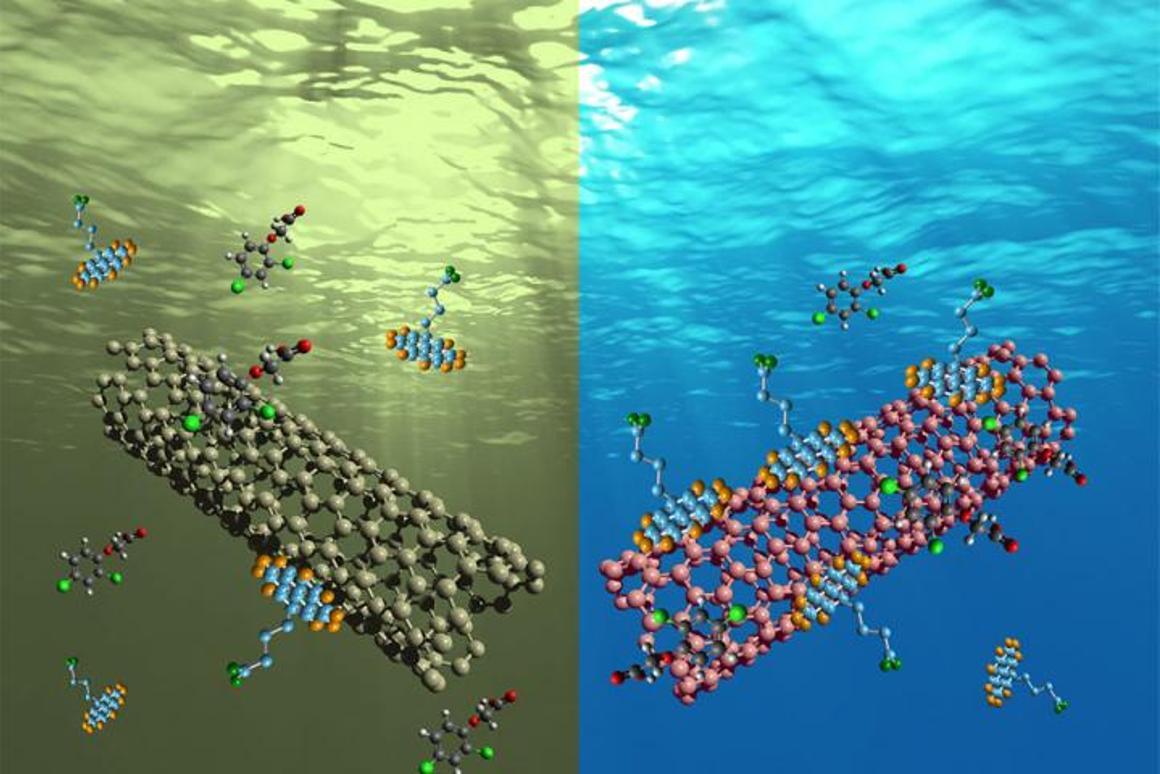 Organic pollutants stick to carbon nanotubes, while water molecules are repelled