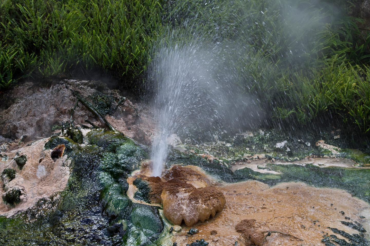 RUB researchers have developed a bio-based solar cell using cyanobacteria found in hot springs (Photo: Noel McKeegan)
