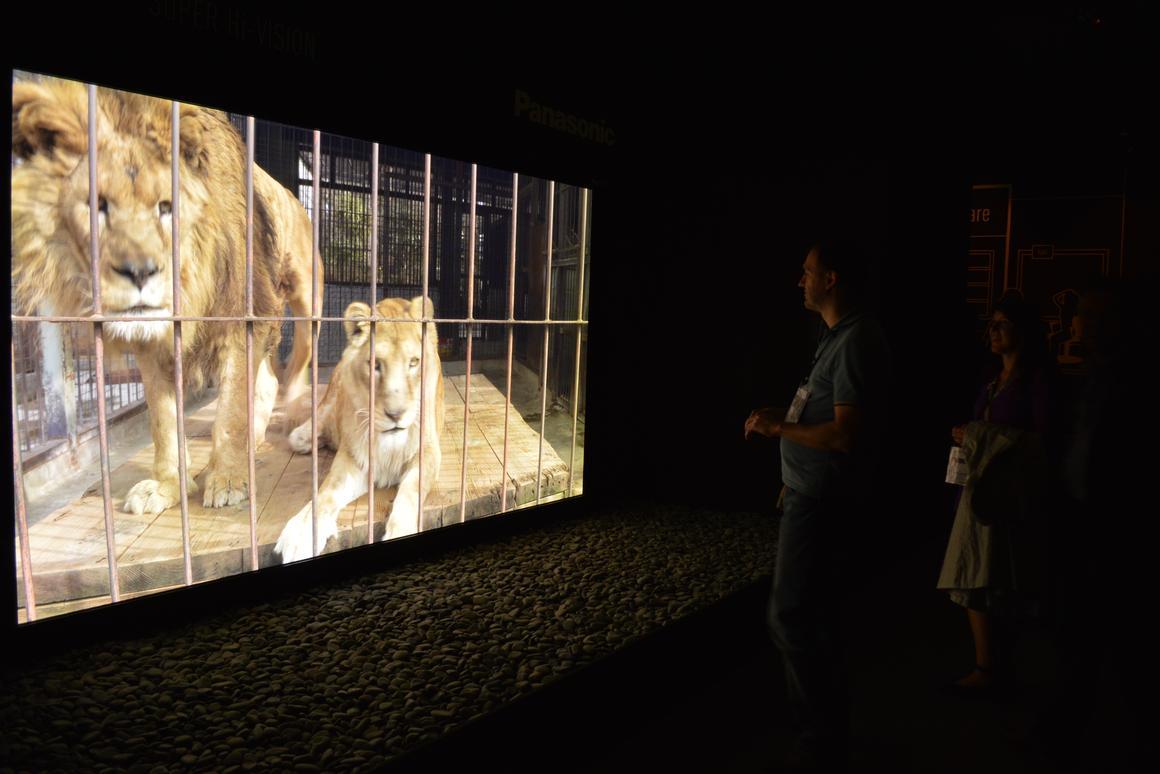 Panasonic and NHK's 145-inch 8K display