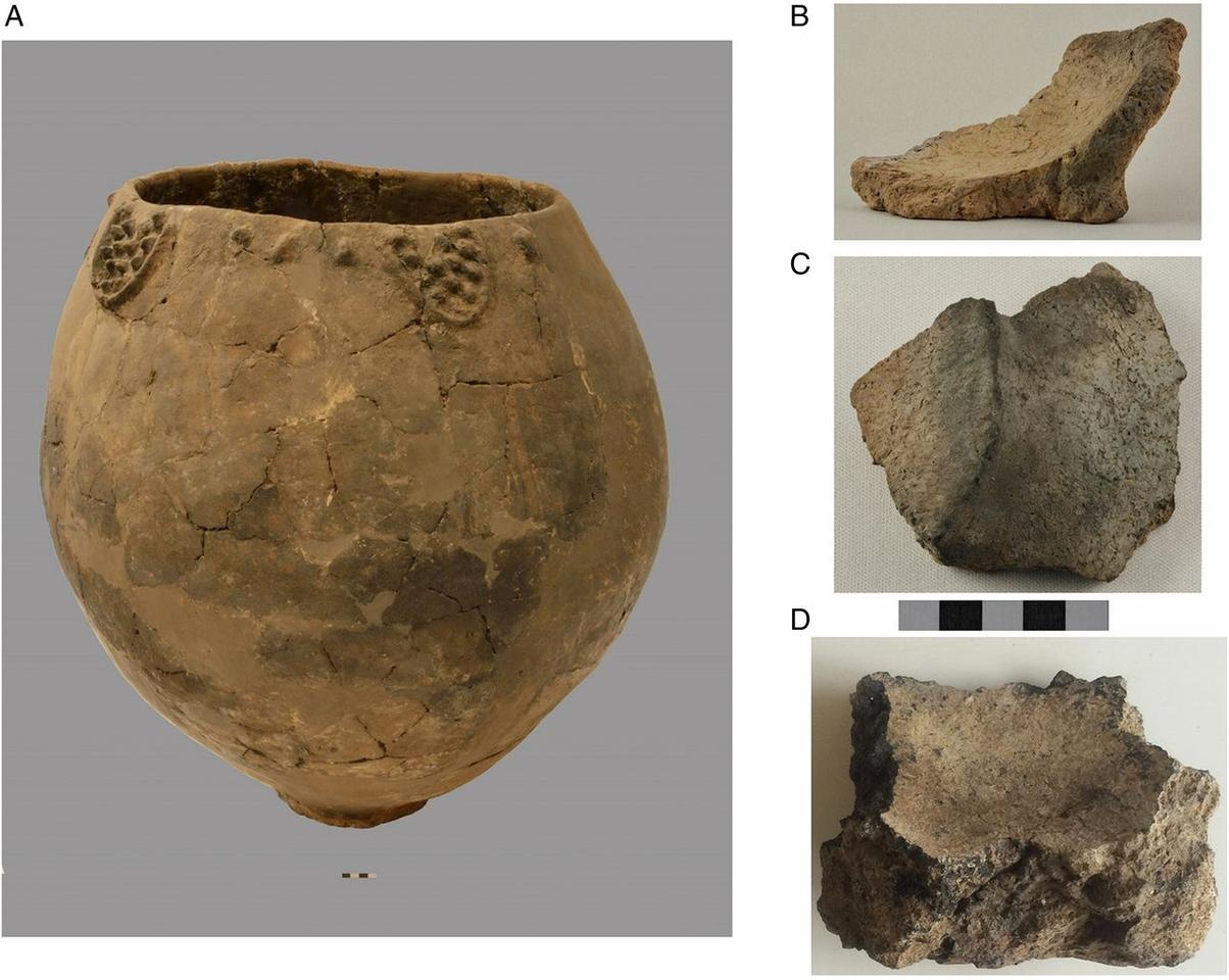 The pottery fragments found date back to the Early Ceramic Neolithic period about 8,000 years ago, meaning they represent some of the earliest evidence of winemaking ever found