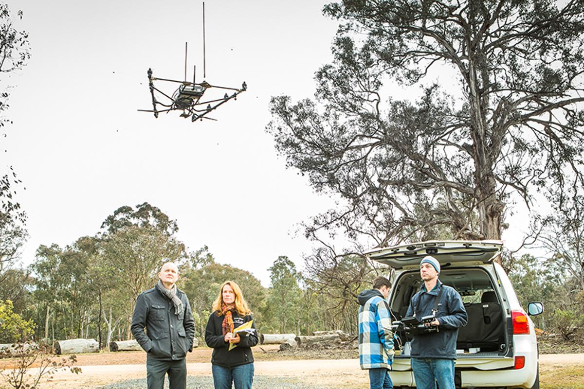 Researchers have built the first drone to track radio-tagged wildlife