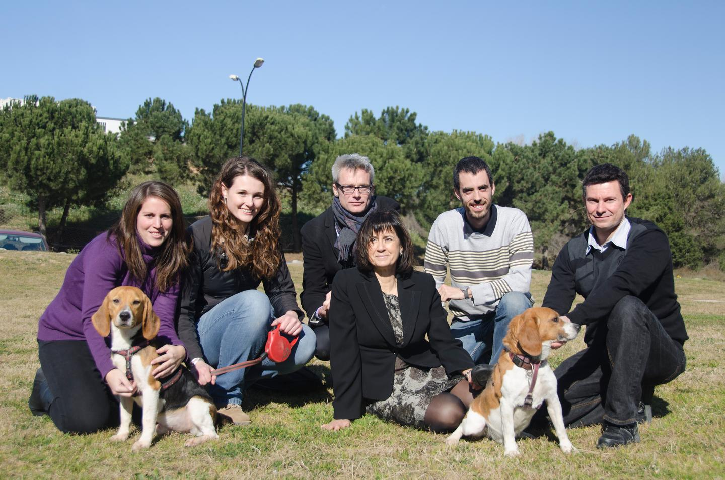 Led by Fàtima Bosch (fifth from left), a University of Barcelona research team has cured dogs of type 1 diabetes using gene therapy (Photo: UAB/Pierre Caufapé)