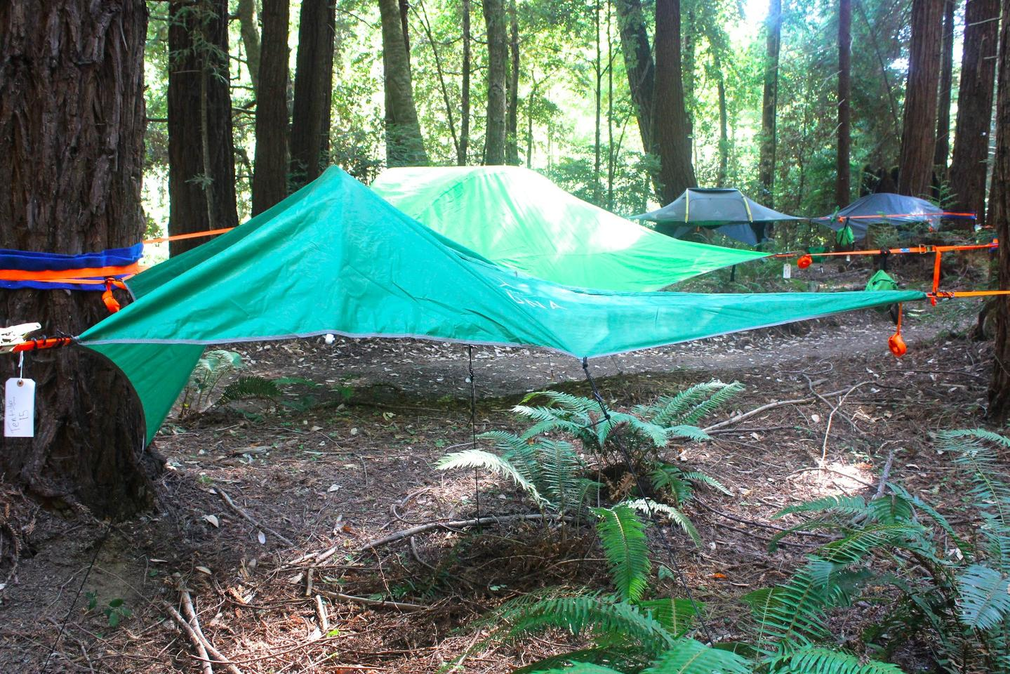 We walked through the Tentsile village to find our assigned tent
