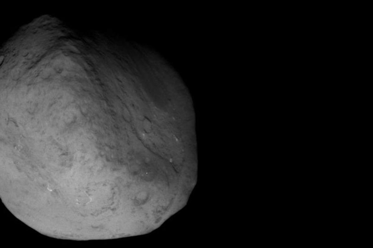 NASA's Stardust NExT mission image of the comet Tempel 1 at 8.39pm PST on February 14th 2011 (Credit: NASA)