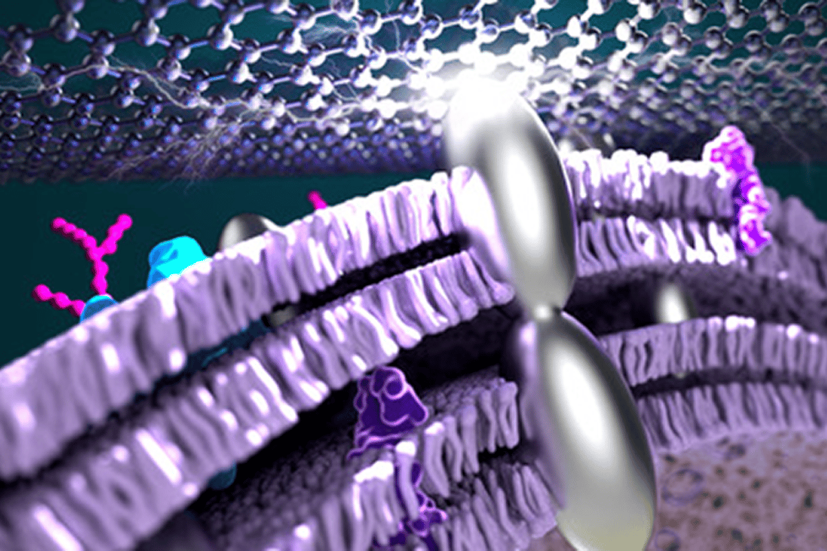 An artist's impression of silver nanoparticles connecting through a bacterial membrane, which has now helped improve the efficiency of microbial fuel cells