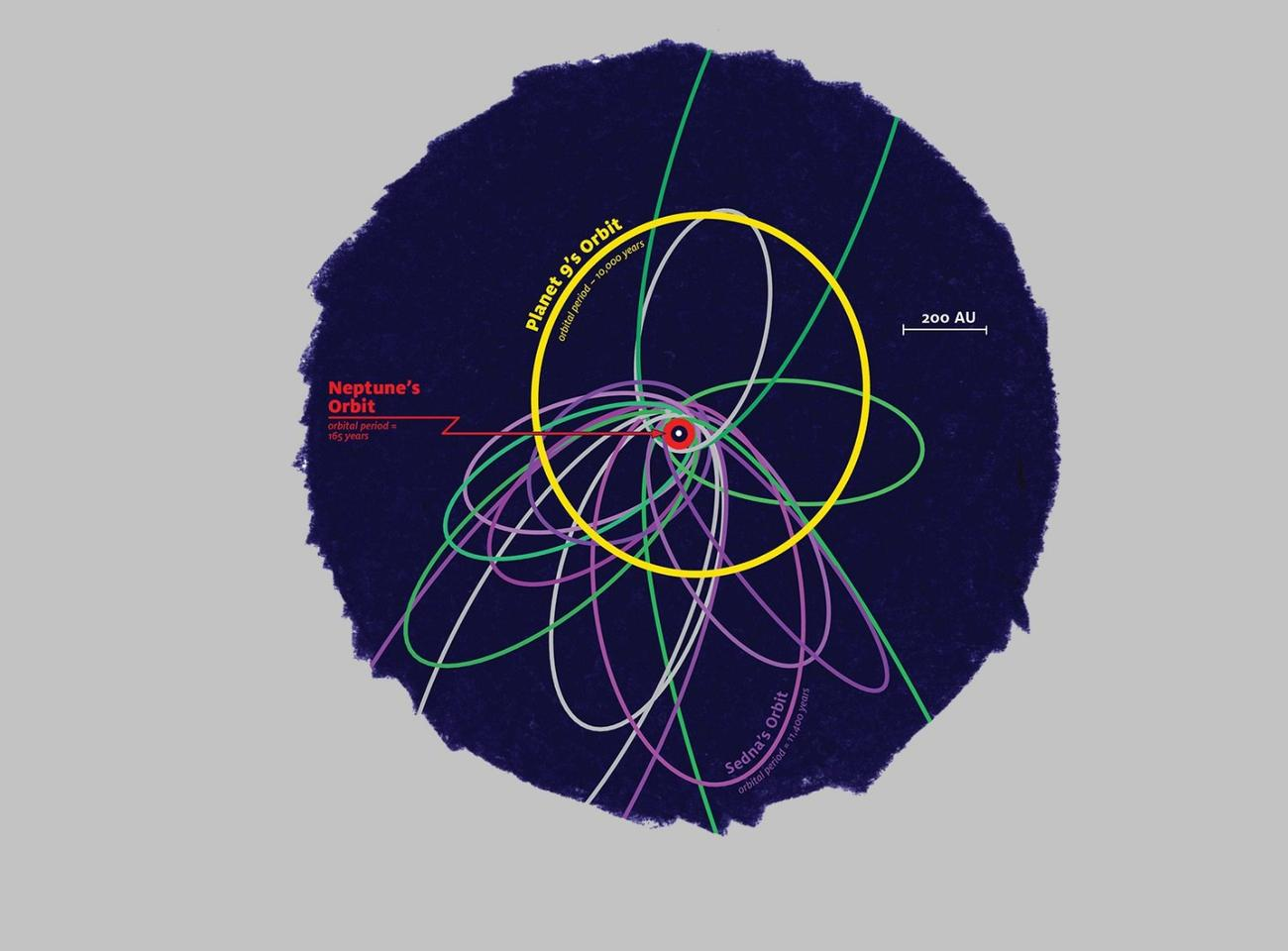 The orbits of objects in the distant solar system: those in green are linked to Neptune, while those in purple are believed to be controlled by the hypothetical Planet Nine (yellow)
