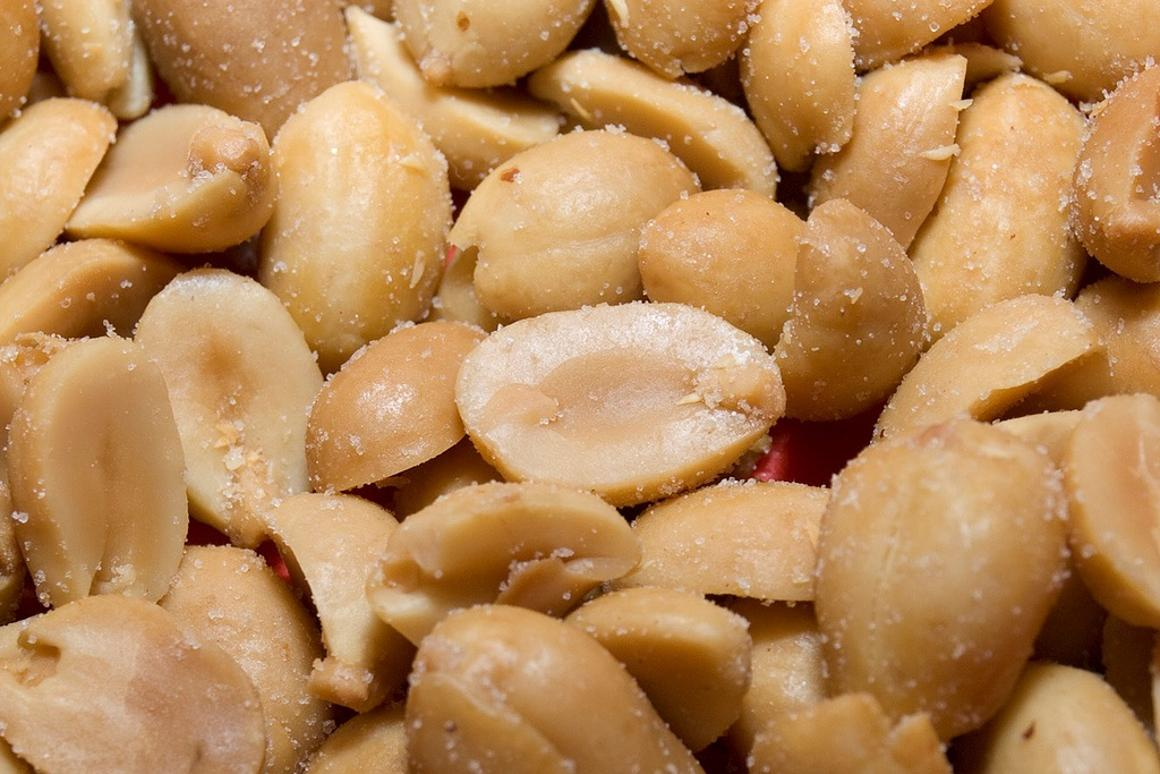 Researchers trick immune system into turning off peanut allergy
