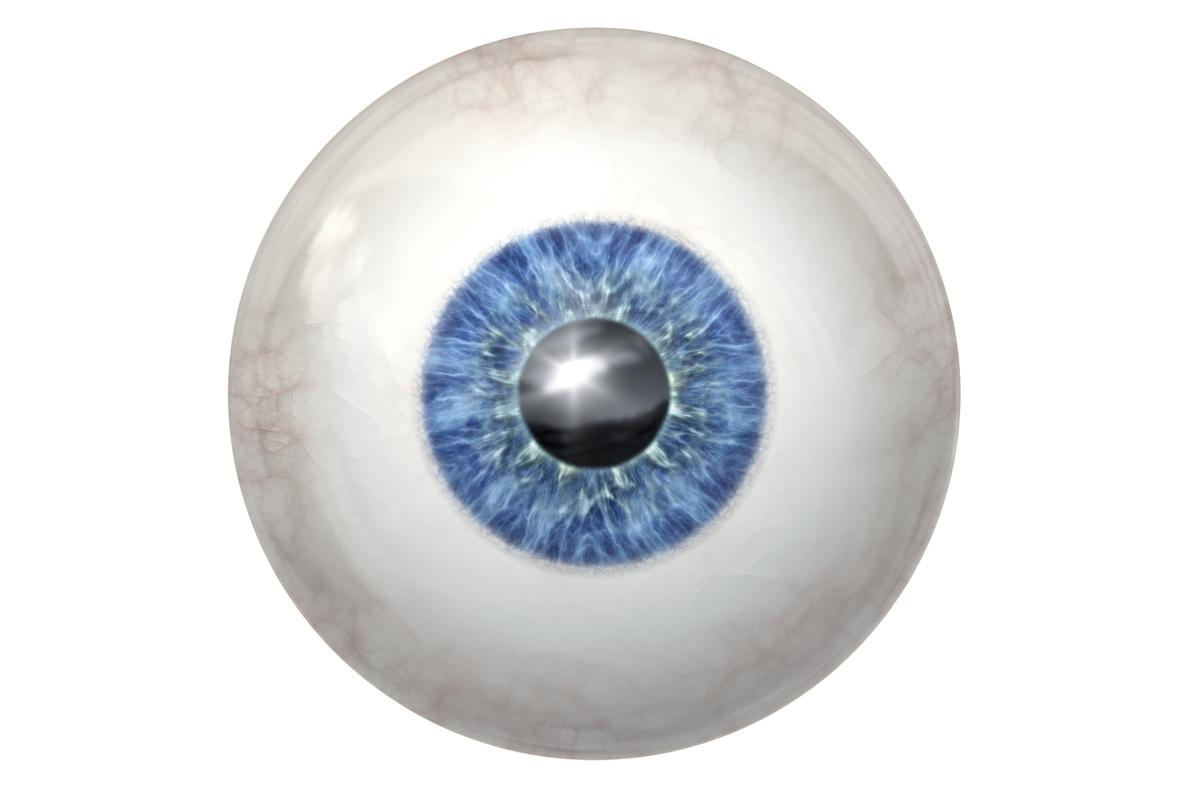 Physicians at the University of Wisconsin-Madison have succeeded in growing human retinal tissue from stem cells (Image: Shutterstock)