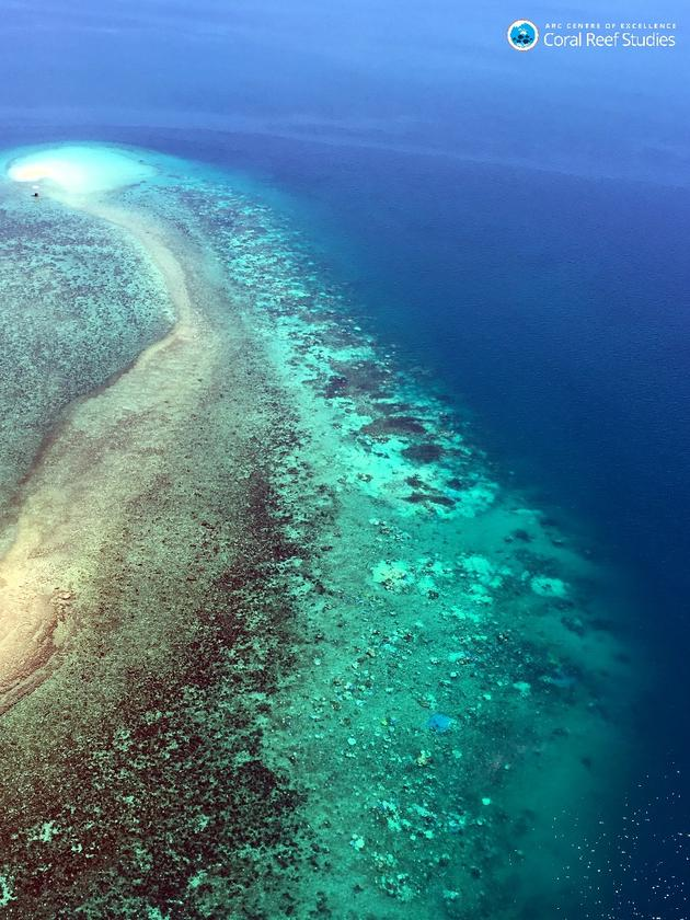 Researcherswill spend the next two to three weeks carrying out underwater and aerial surveys to assess the extentof coral bleaching in the Great Barrier Reef