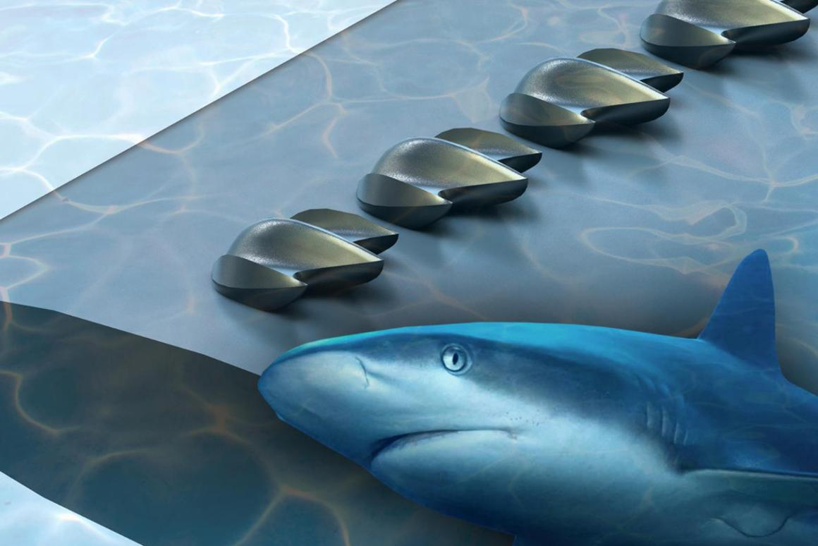 In a new study, researchers turned to shark scales in an attempt to  improve the aerodynamic performance of planes, drones and wind turbines