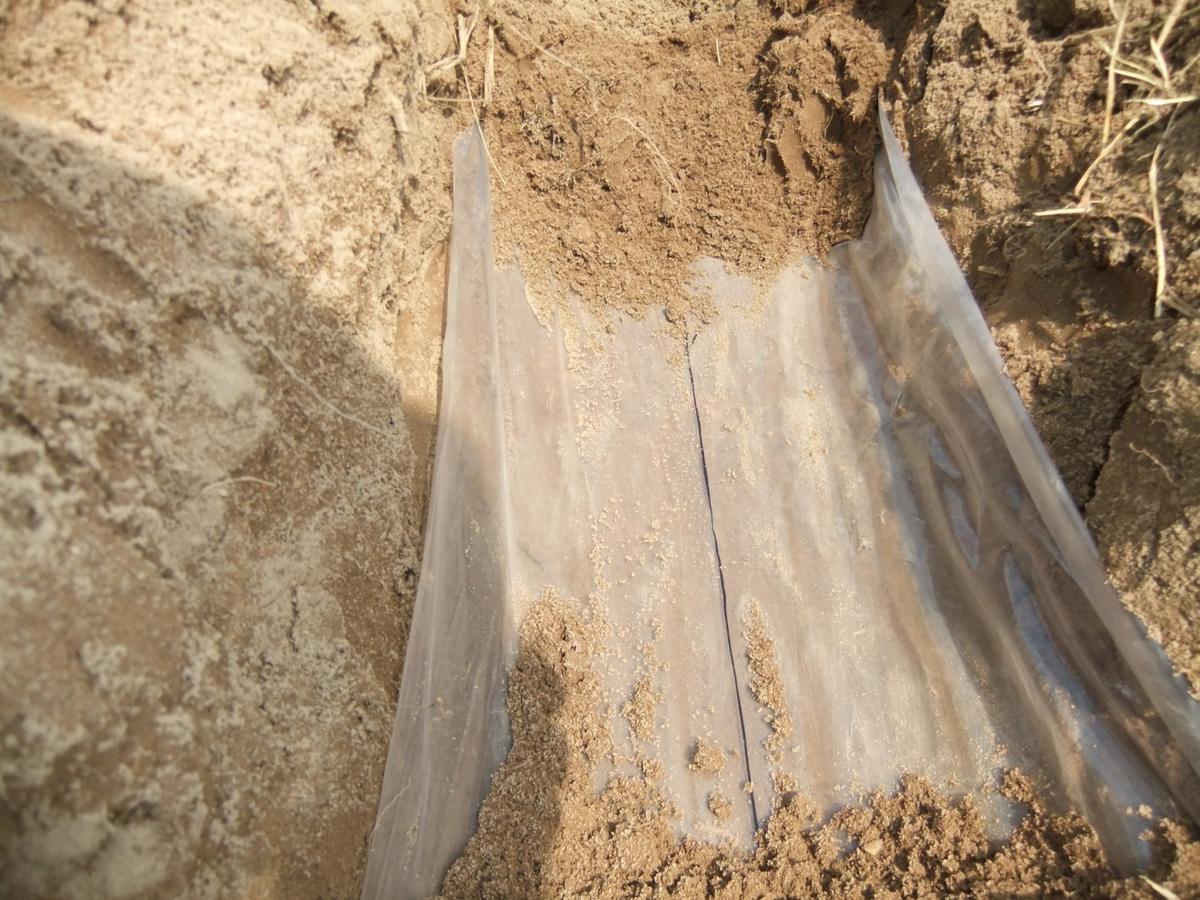 The new water-saving membranes developed at MSU (Photo: MSU)