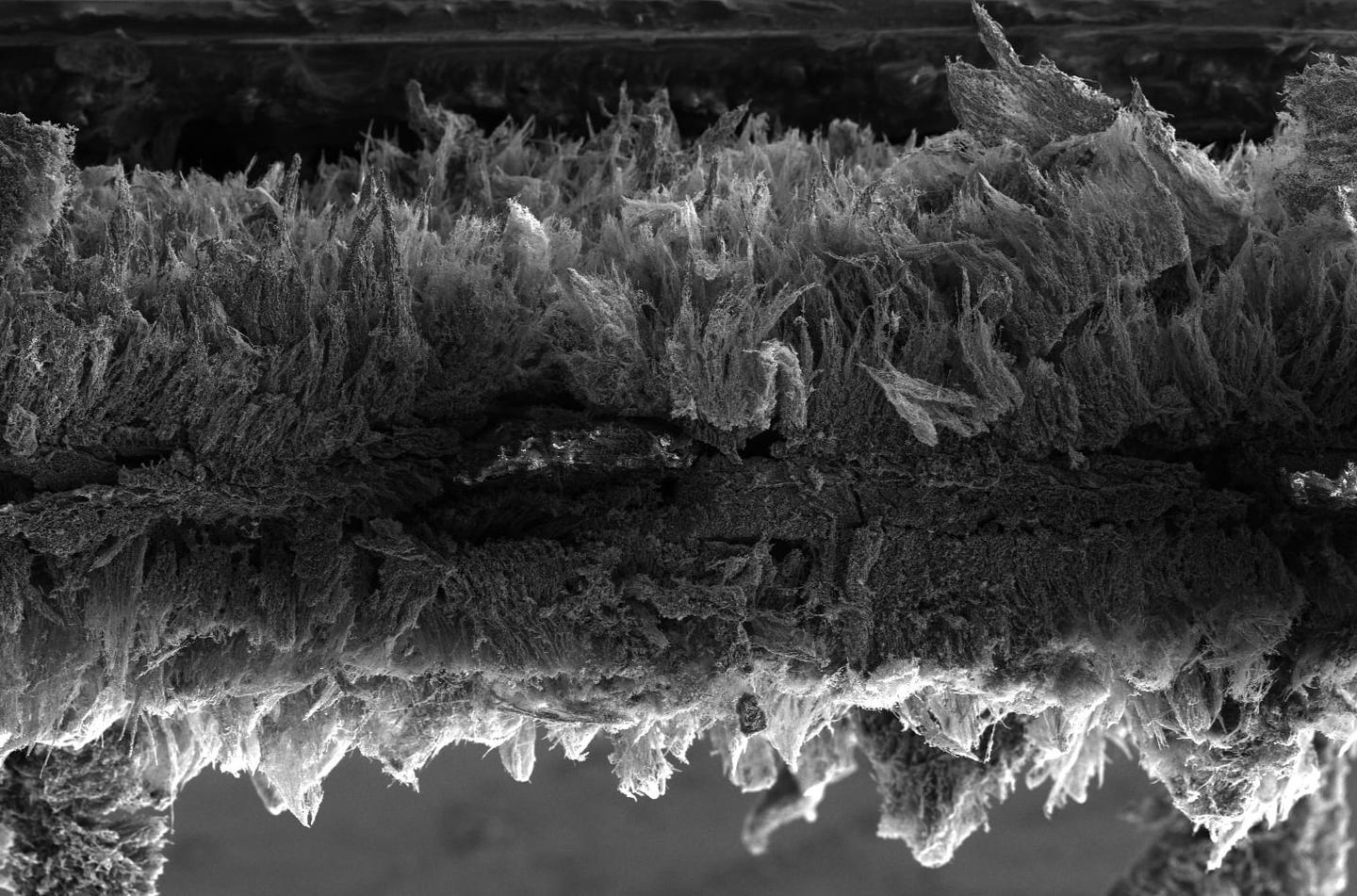An electron microscope image of an air filter made of graphene fibers, which kills trapped bacteria with short jolts of electricity