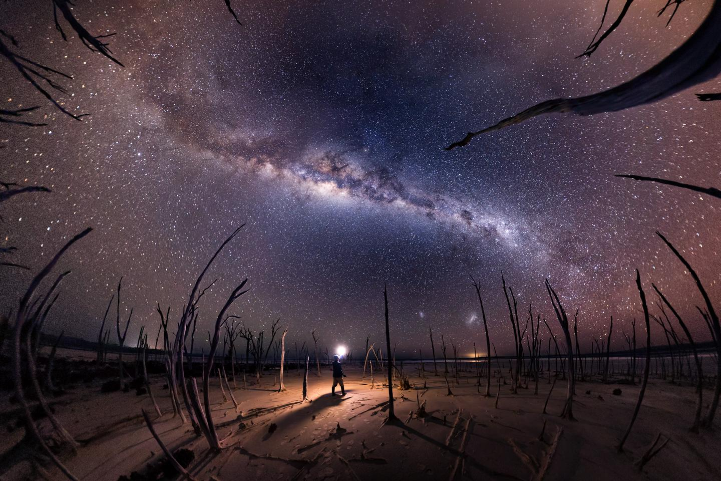 Nightmare, shot in Dumbleyung Lake, Australia. Dead trees reach up towards the Milky Way, surrounding a lone figure with a light.