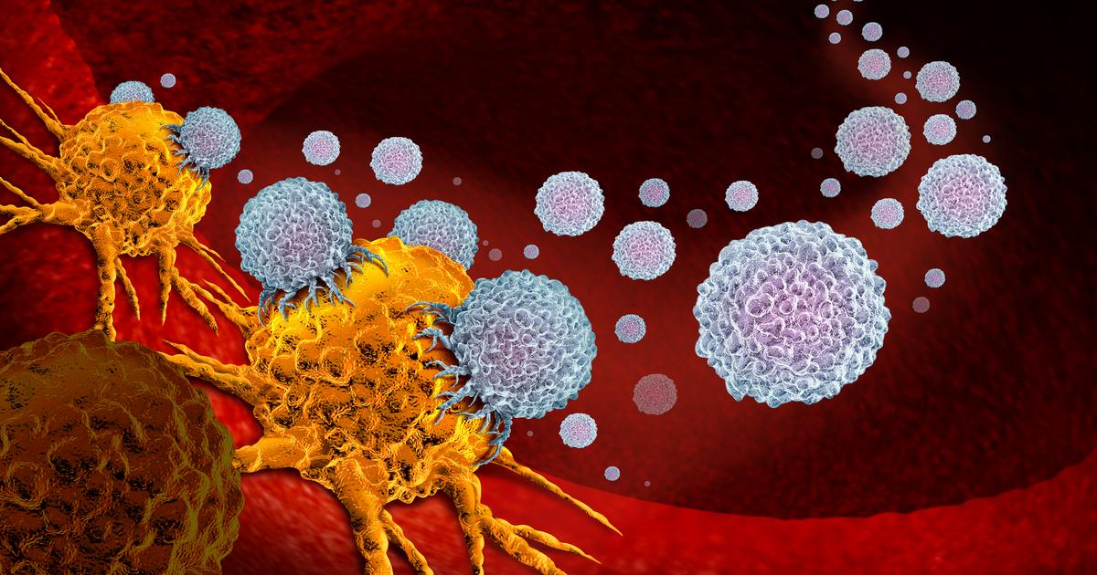 Antibody aids immunotherapy in clearing out cancer in mice