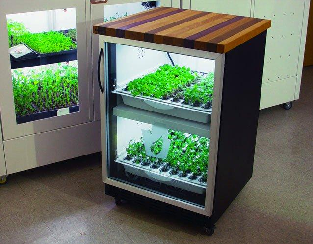 The Urban Cultivator is a computer-controlled hydroponic growing system for herbs and vegetables