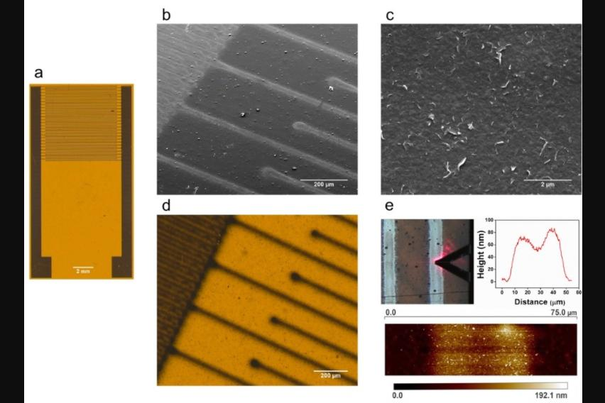 """The prototype sensor (a), and a close look at its """"electrode fingers"""" (b,d)"""
