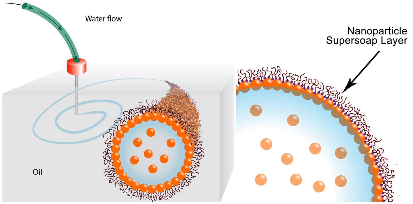 Gold nanoparticles in the water combine with polymer ligands in the oil to form an elastic film (nanoparticle supersoap) at the interface, locking the structure in place