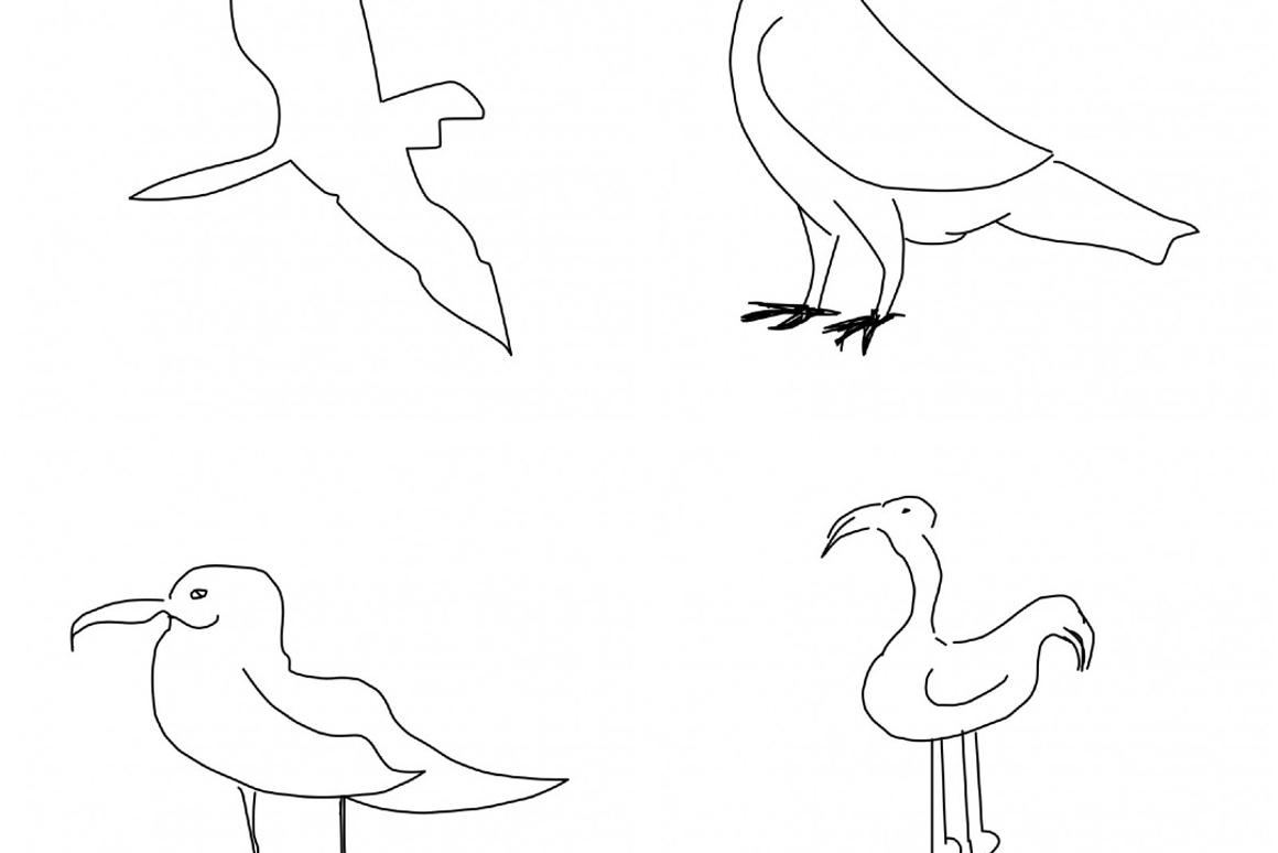 Sketch-a-Net knows the difference between drawings of seagulls and flamingos, among other things