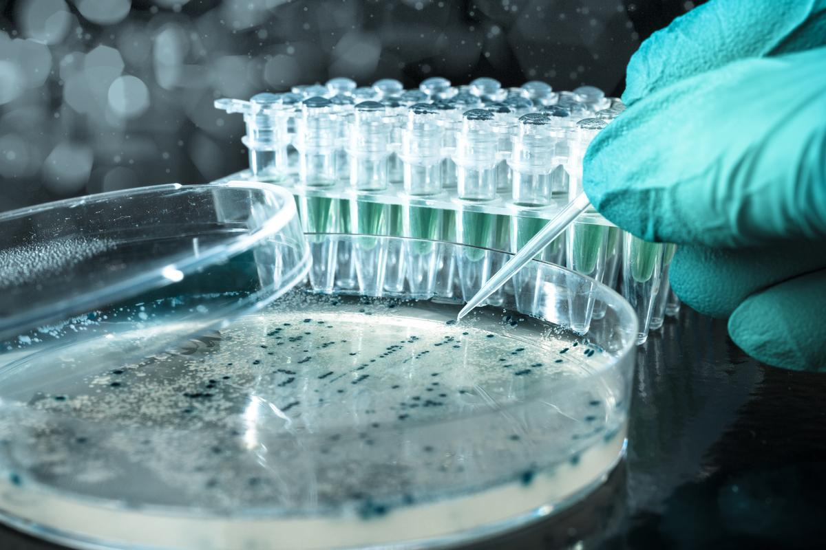 A link has been discovered between a molecular scaffold and degenerative diseases such as dementia (Photo: Shutterstock)