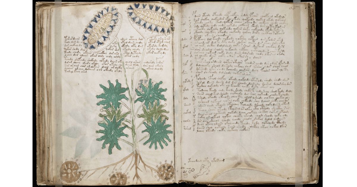 """Has the medieval """"Voynich code"""" finally been cracked by a Bristol academic?"""
