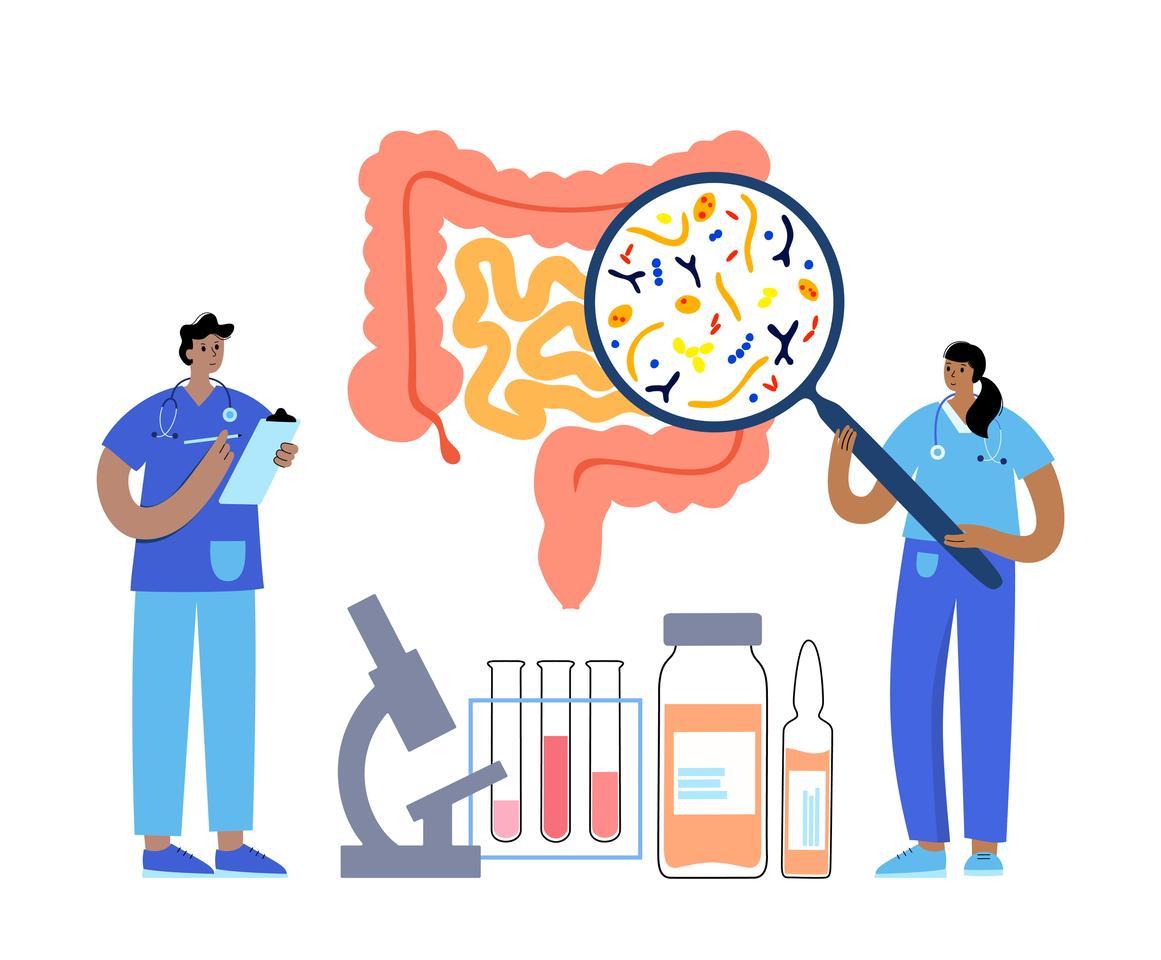 Gut bacteria accumulate popular medicinal medicines