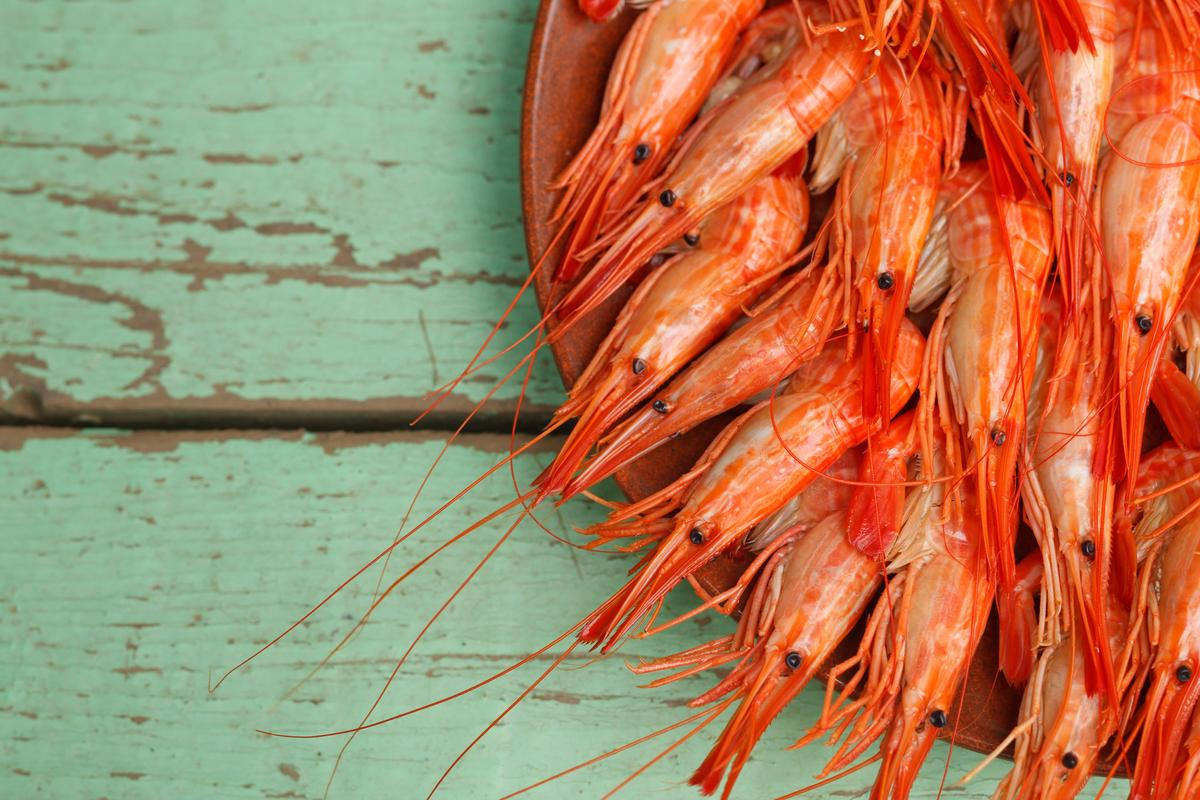 Chitin, found in shrimp shells, has been used to produce a sustainable electrode for a flow battery