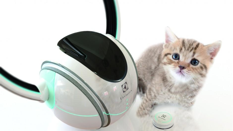 Petollar is a robotic pet minder
