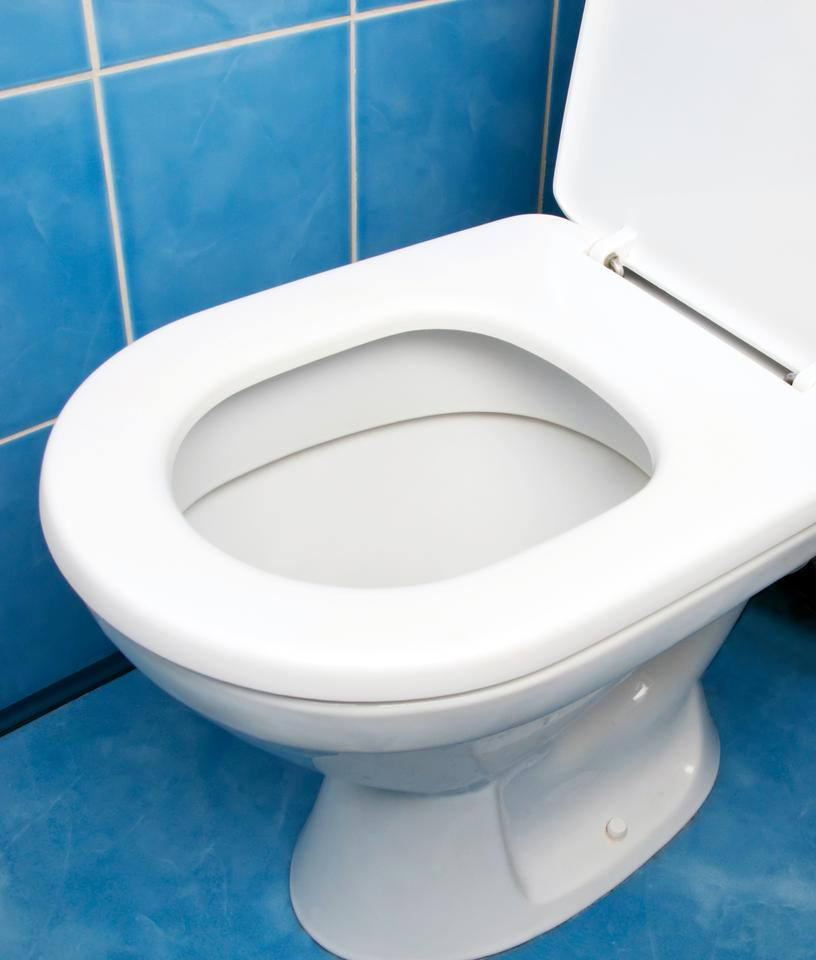 According to Penn State, a typical toilet uses 6 liters (1.6 US gal) of water per flush