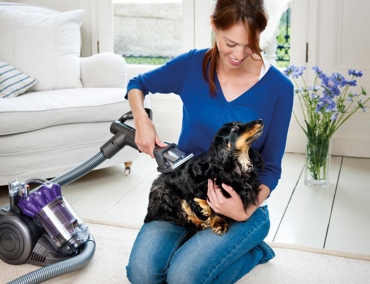 The Dyson Groom tool has been designed to help prevent the mess associated with dog hair loss by sucking any loose hair into the vacuum before it gets the chance to hit the floor