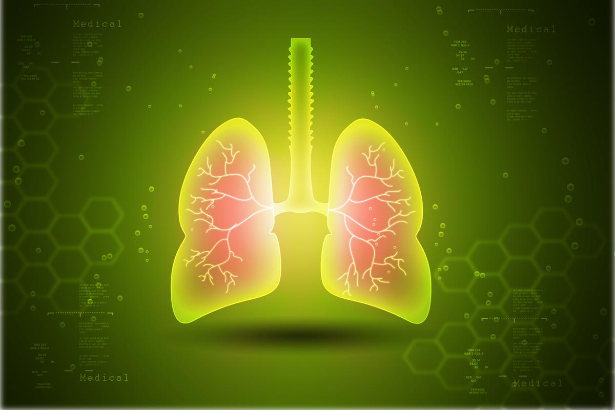 By identifying a protein in human lungs, scientists may have uncovered a new treatment for asthma and chronic obstructive pulmonary disease