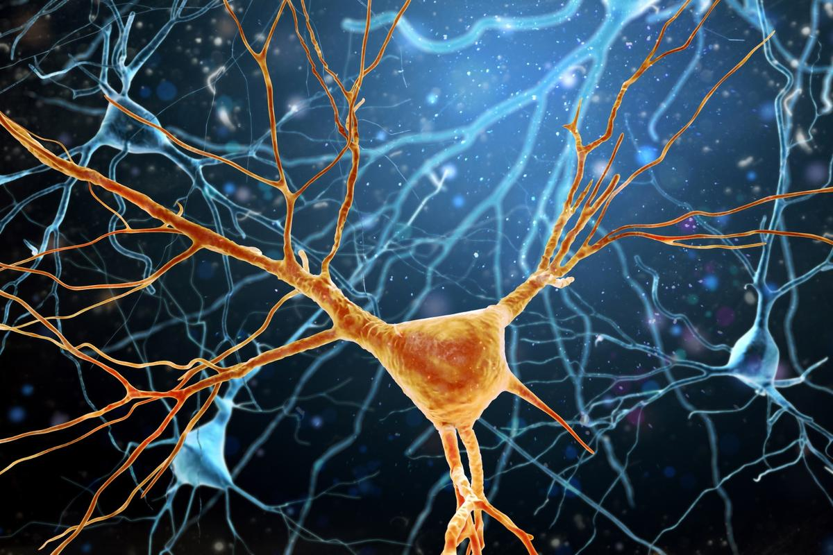 A new experimental drug has displayed success in stopping the progression of Parkinson's disease in mouse models