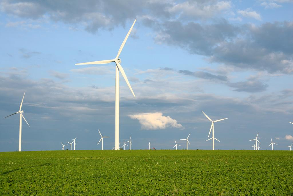 Wind farm near Wadena, Indiana (Image: John Schanlaub via Flickr)