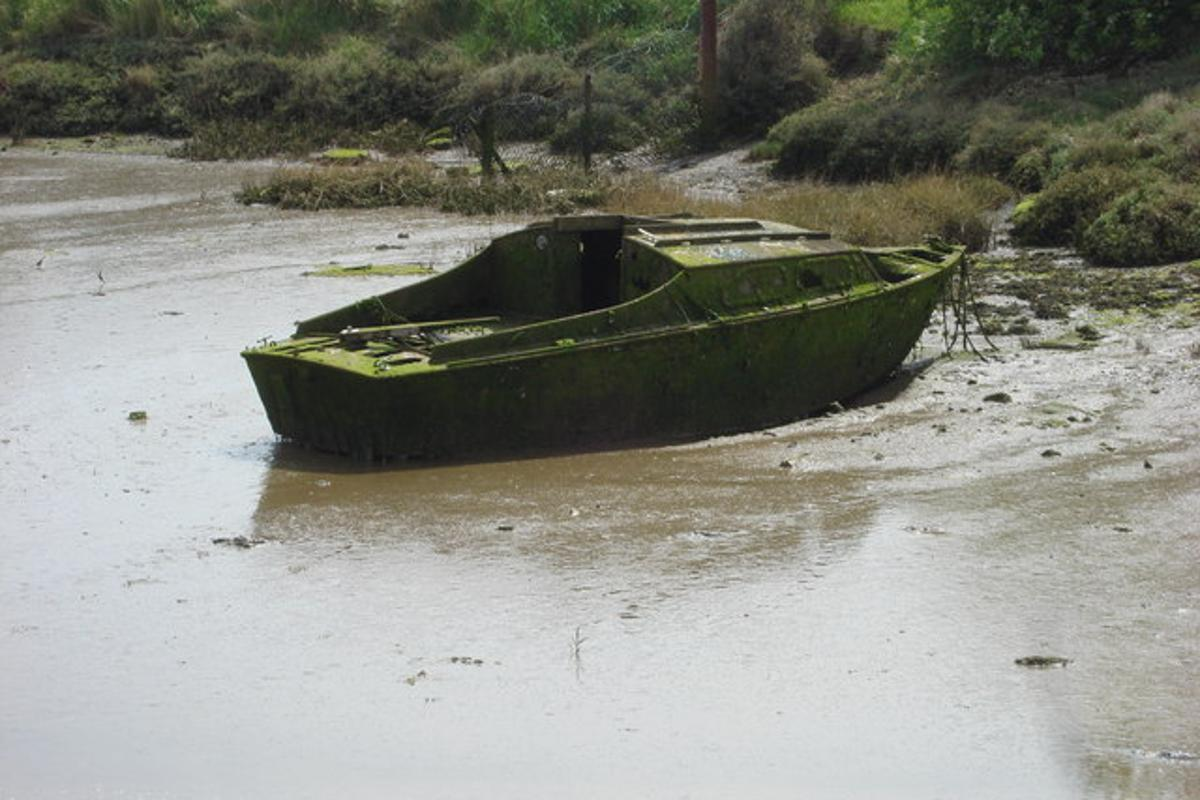 Scientists have devised a chemical method for recycling composite parts from discarded recreational boats (Photo: Oxyman)