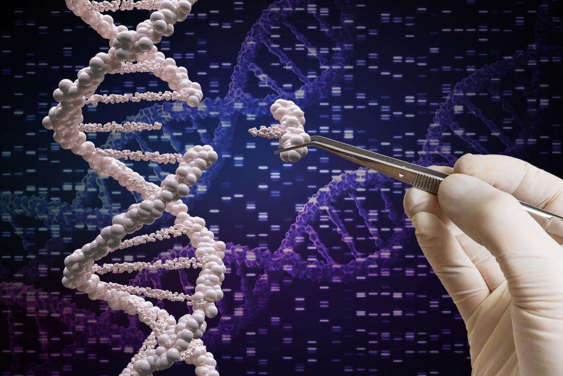 """Two new studies are being dubbed """"CRISPR 2.0"""" for the way they have improved the precision of the breakthrough gene-editing technique"""