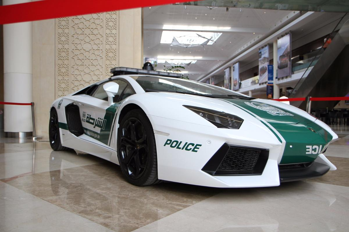 In addition to its fleet of supercars, the Dubai Police are now enlisting the help of Crime Prediction software