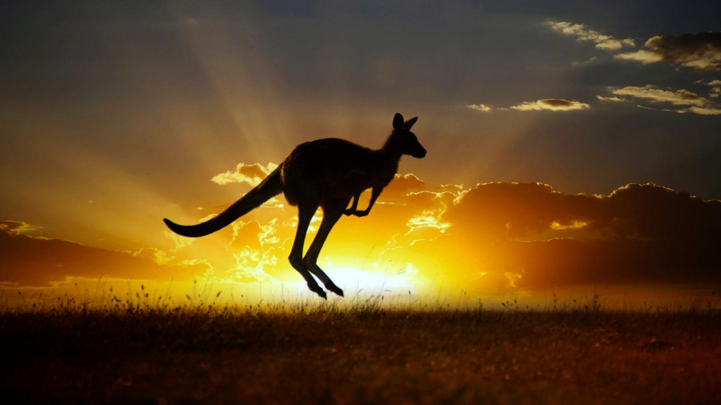 Australia is one of the sunniest continents on Earth, which a local startup hopes to use to power large-scale carbon capture technologies