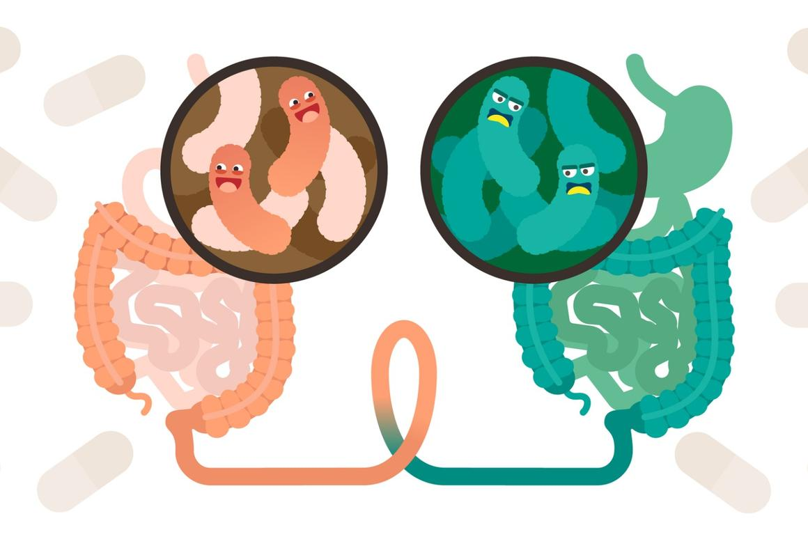 First human trial into fecal transplants for obesity