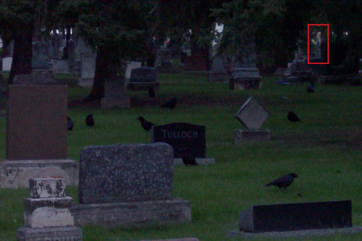 A possible ghost (upper-right corner) photographed in an Edmonton cemetery using a conventional digital still camera (Photo: Paranormal Explorers)