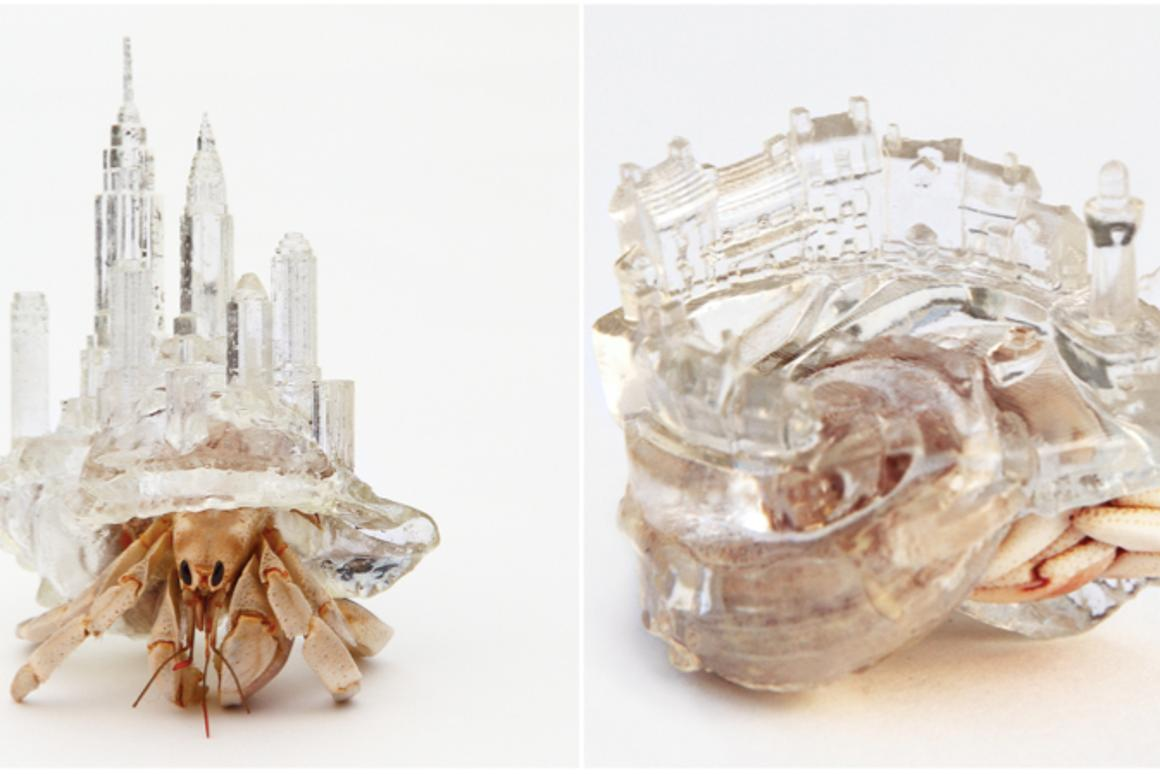 Artificial shells for hermit crabs by Aki Inomata (© AKI INOMATA)