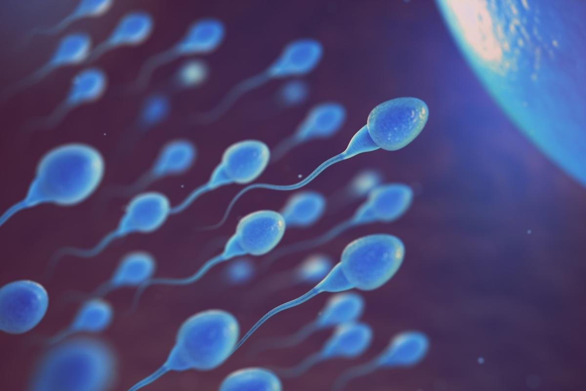 A thorough, yet observational, study found tight underwear does correlate with lower sperm counts, but not to a point where they arebelow a normal range