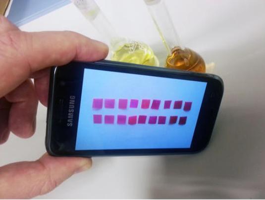 A new test sheet developed in Spain reveals the presence of mercury in water (Photo: J. M. García et al.)