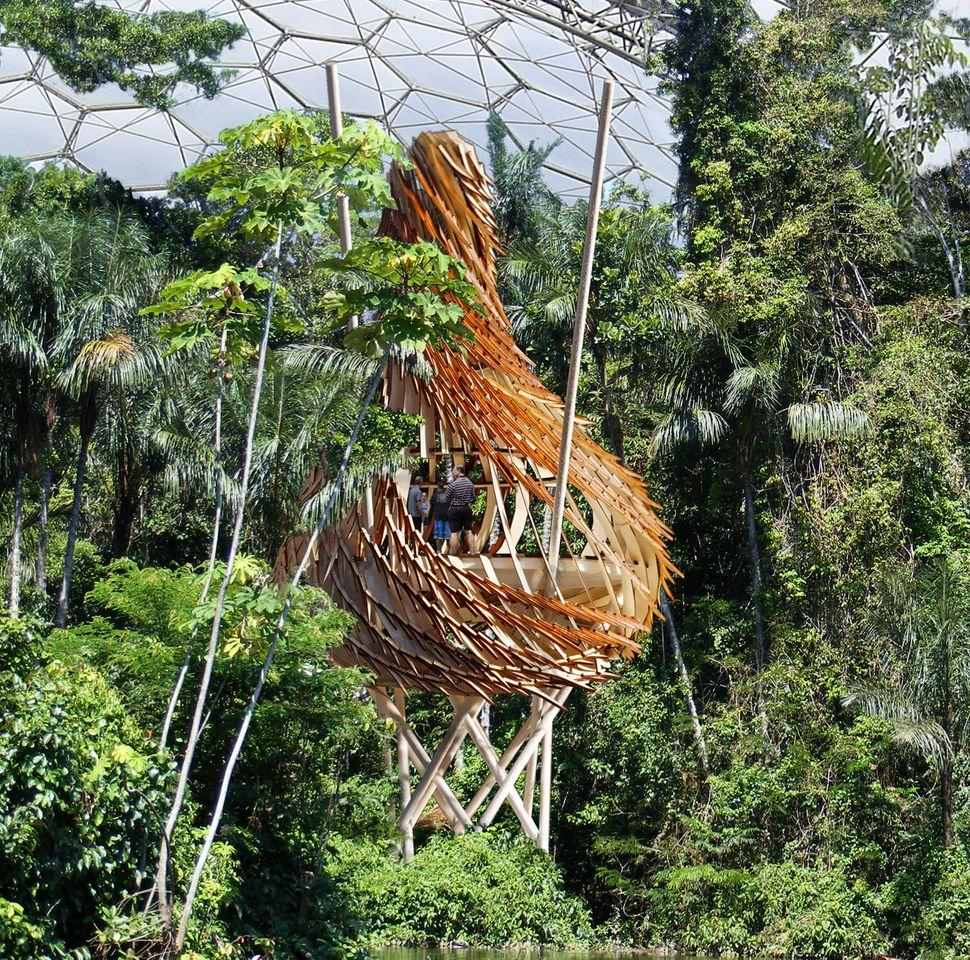 UK architectural firm Blue Forest has revealed its plans to build a large nest-like treehouse within the Eden Project's Humid Tropics Biome