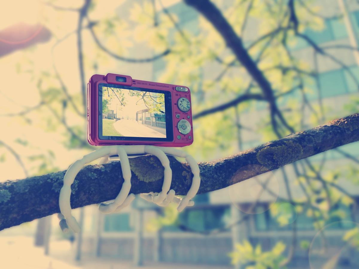 The Breffo Adventure Camera Kit can wrap around a tree branch