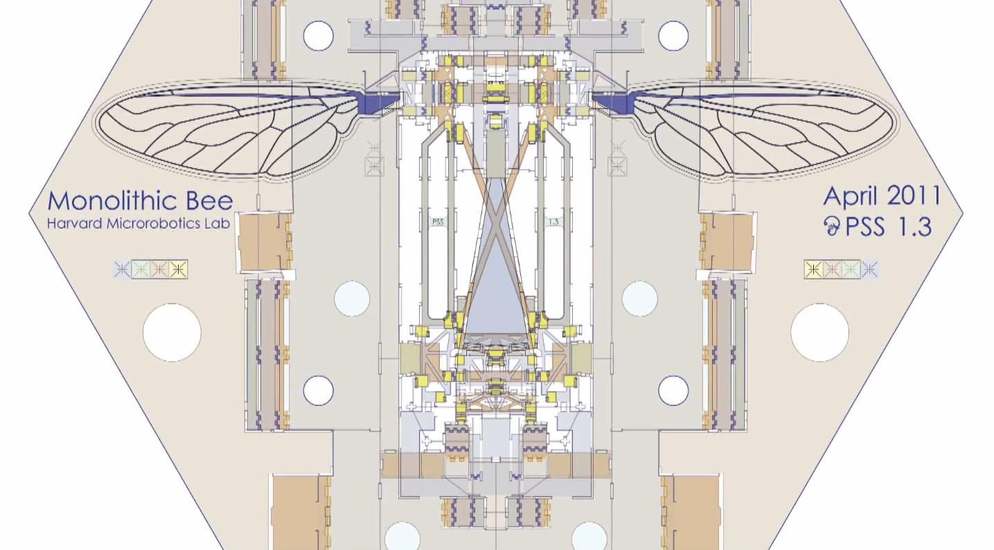 Plan drawing of the Mobee and scaffold