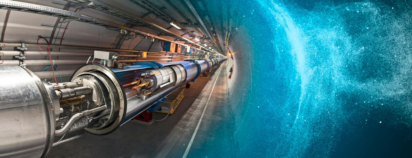 A weasel has short circuited the LHC's electrical power system