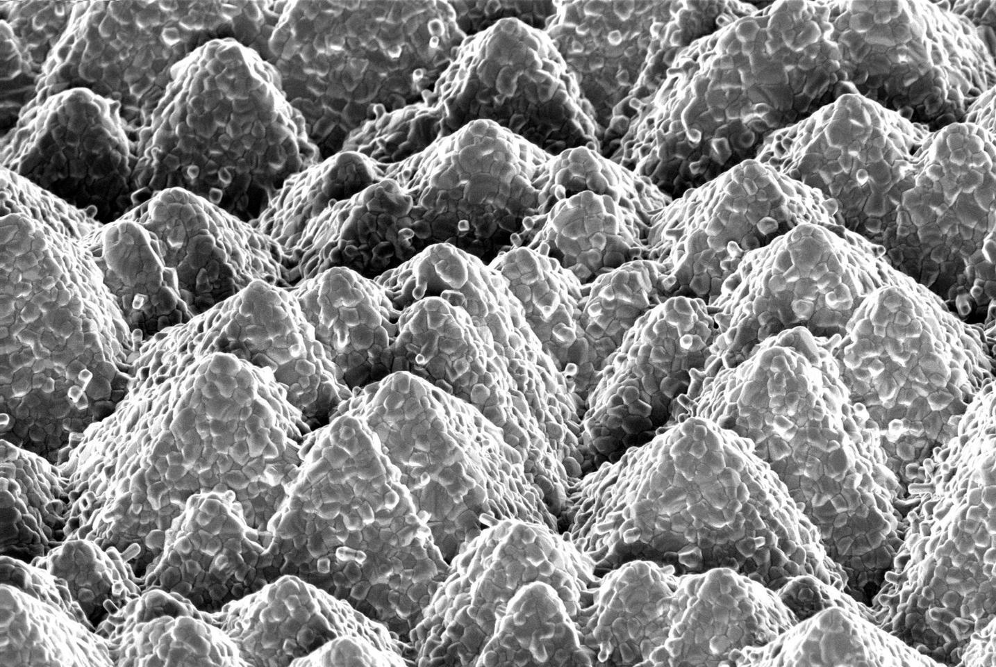 The pyramid shapes of silicon'ssurface structure is clear in this microscope image