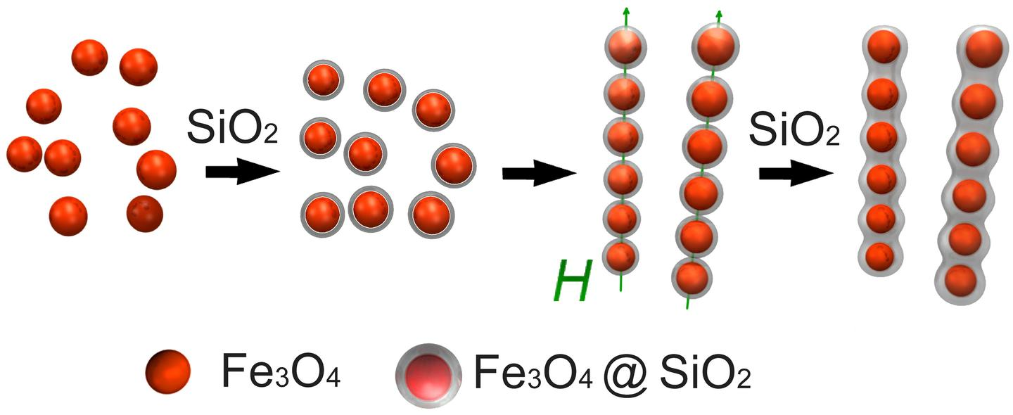 From left to right: Iron oxide particles are coated with silica to form tiny linear chains that grow into robust peapod-like structures with the application of more silica